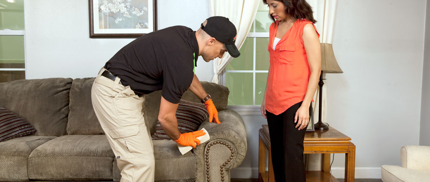 Summerville, SC carpet upholstery cleaning